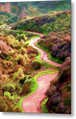 Griffith Park Trail Metal Print by Timothy Bulone