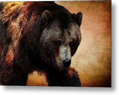 Grizzly Bear Metal Print by Judy Vincent
