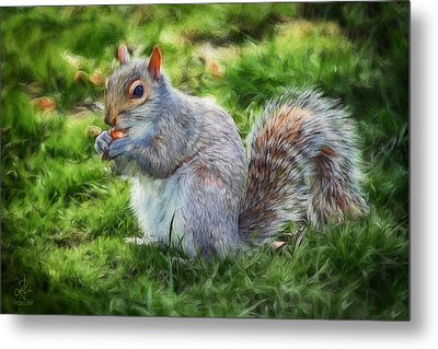 Metal Print featuring the photograph Ground Squirrel by Pennie  McCracken
