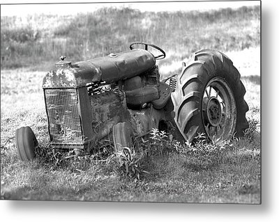 Grounded Metal Print by Mike McGlothlen