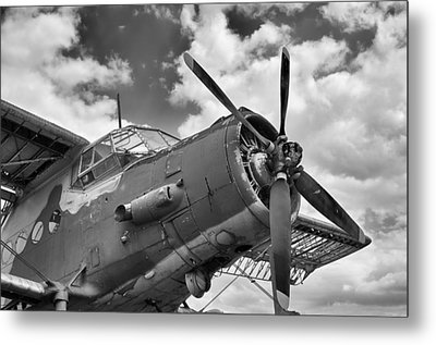 Grounded Metal Print by Tgchan
