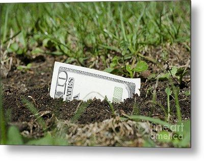 Growing Money Metal Print by Mats Silvan