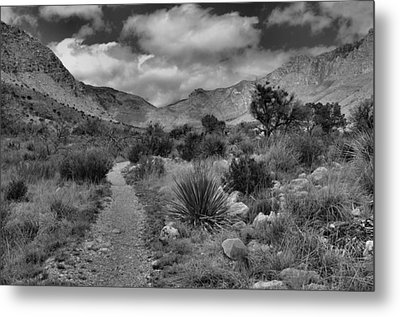 Guadalupe Mountains Morning Metal Print by Stephen  Vecchiotti