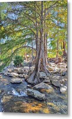 Metal Print featuring the photograph Guadalupe River by Savannah Gibbs
