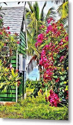 Guana Home Metal Print