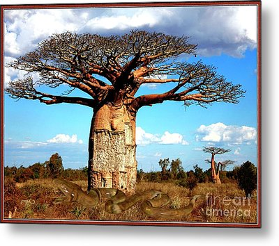 Guard Of Baobab 1 Metal Print