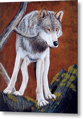 Guardian Of The Den Metal Print by Lorraine Foster