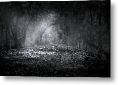 Guardian Of The Forest Metal Print by Mark Andrew Thomas