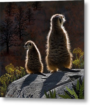 Guarding Meerkats Metal Print