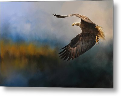 Guided By The Light Metal Print by Jai Johnson