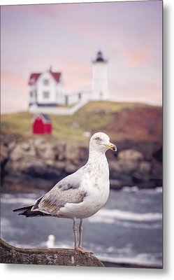 Gull At Nubble Metal Print by Heather Applegate