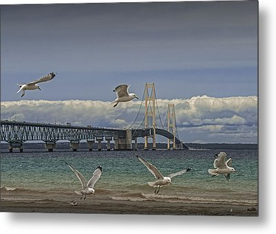 Gulls Flying By The Bridge At The Straits Of Mackinac Metal Print by Randall Nyhof