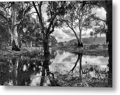 Metal Print featuring the photograph Gum Creek by Douglas Barnard