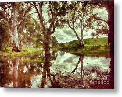 Metal Print featuring the photograph Gum Creek V2 by Douglas Barnard