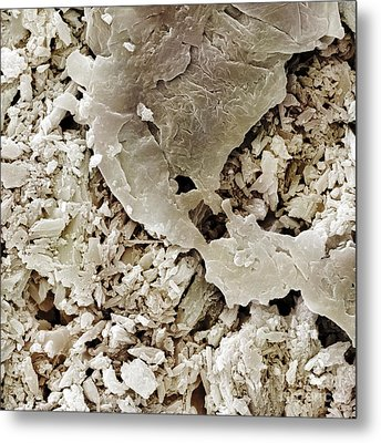 Gypsum Crystals Sem Metal Print by Power and Syred