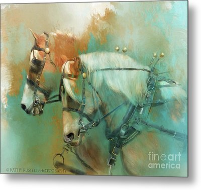 Haflinger Team Metal Print