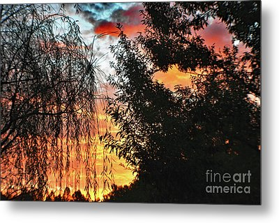 Halloween Sunrise 2015 Metal Print
