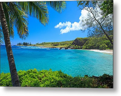 Hamao Beach With Palm Tree Metal Print