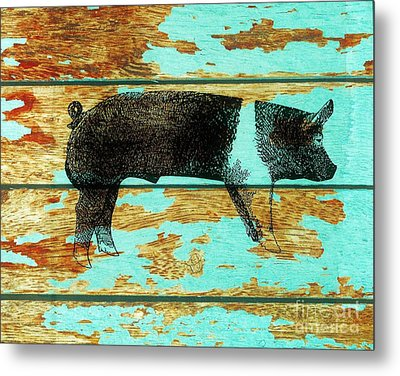 Hampshire Boar 1 Metal Print by Larry Campbell