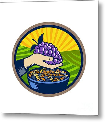 Hand Holding Grapes Raisins Oval Woodcut Metal Print by Aloysius Patrimonio