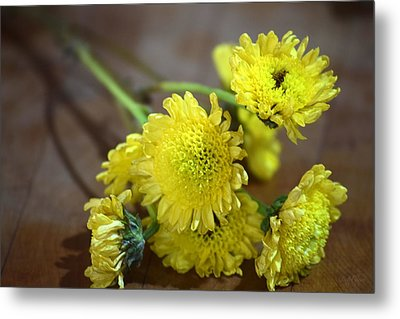 Metal Print featuring the photograph Handful For You by Deborah  Crew-Johnson