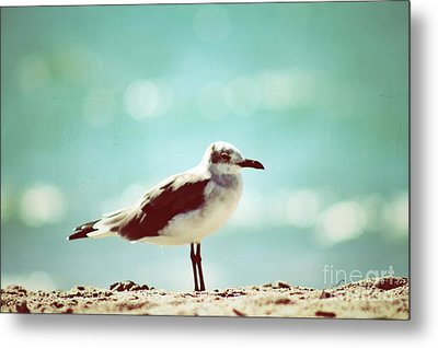 Hanging Around Metal Print by Gina Cormier