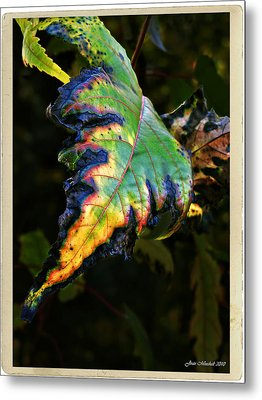 Metal Print featuring the photograph Hanging Out by Joan  Minchak