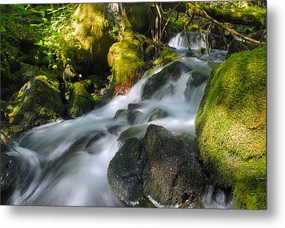 Hanson Falls Metal Print by Larry Ricker