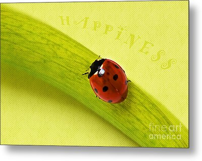 Happiness Metal Print by Angela Doelling AD DESIGN Photo and PhotoArt