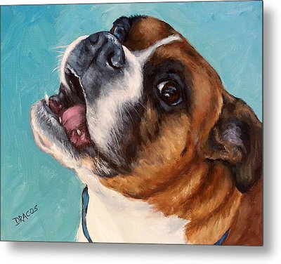 Happy Boxer Dog Metal Print by Dottie Dracos