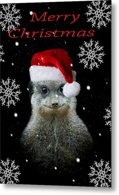 Happy Christmas Metal Print by Paul Neville