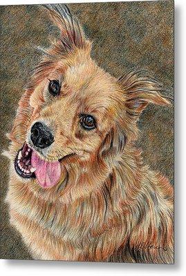 Happy Dog Metal Print by Joanne Stevens
