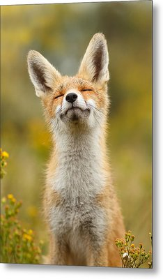 Happy Fox Metal Print by Roeselien Raimond