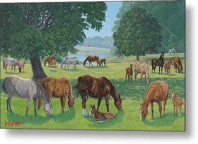 Happy Hollow Mares Metal Print