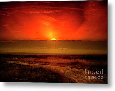 Happy New Year Metal Print by Pravine Chester