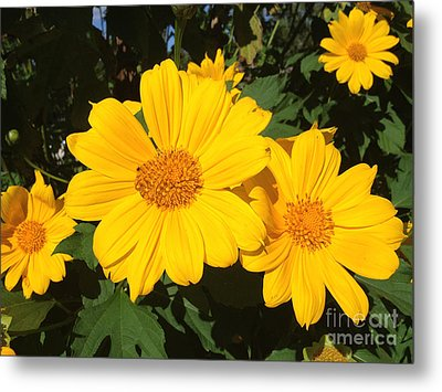 Happy Yellow Metal Print by LeeAnn Kendall