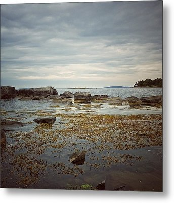 Harbor Metal Print by Karen Stahlros