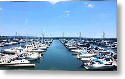 Harbor Life Metal Print