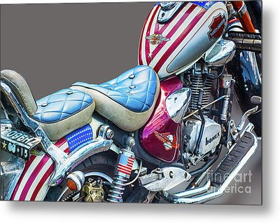 Metal Print featuring the photograph Harley by Charuhas Images