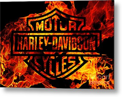 Harley Davidson Logo Flames Metal Print by Randy Steele