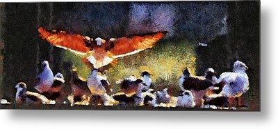 Harris Creek Gulls Metal Print