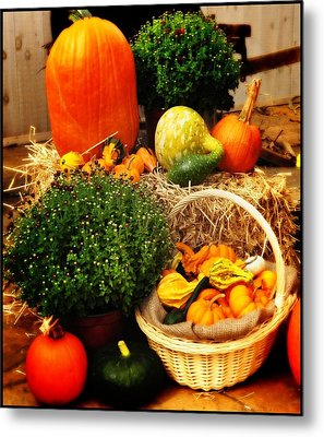 Harvest Metal Print by Bill Cannon