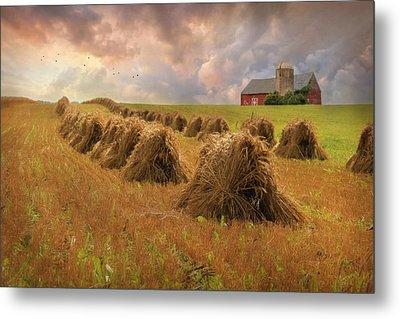 Harvest Blessings Metal Print by Lori Deiter