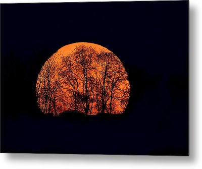 Harvest  Moon Rising Metal Print