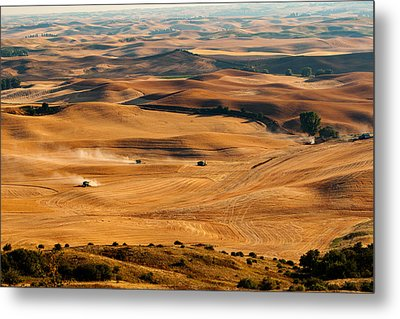 Harvest Overview Metal Print by Mary Jo Allen