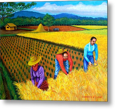 Harvest Season Metal Print