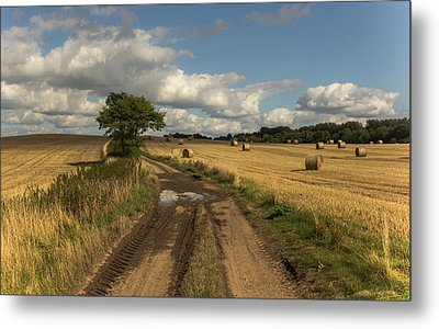 Harvest Time Metal Print by Chris Fletcher