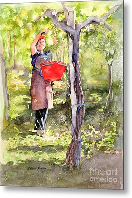 Metal Print featuring the painting Harvesting Anna's Grapes by Bonnie Rinier