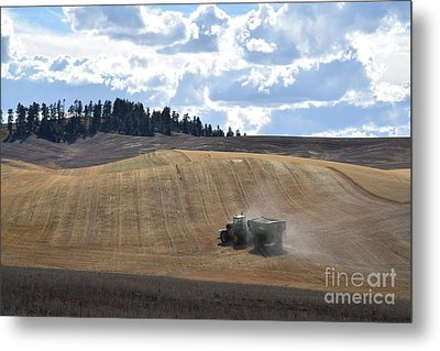 Hauling The Harvest From The Fields. Metal Print