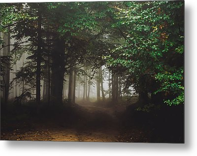 Haunted Forest #2 Metal Print
